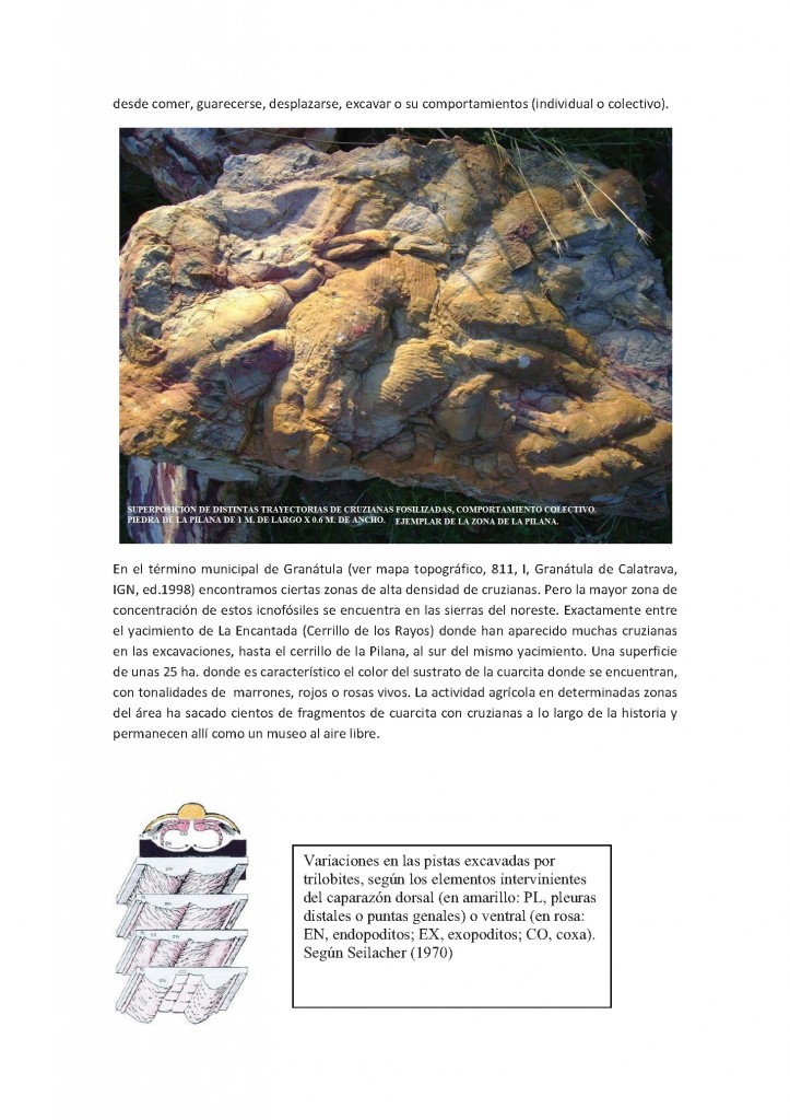 cuaderno-cultural-2013_Página_41
